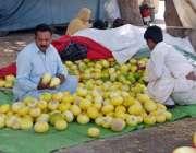 حیدر آباد: ایک محنت کش سڑک کنارے خربوزے سجائے گاہکوں کا منتظر ہے۔