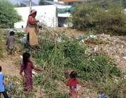 ملتان: خانہ بدوش خاتون اور بچے گھر کا چولہا جلانے کے لیے خشک لکڑیاں ..