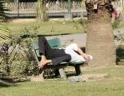 لاہور: جیلانی پارک میں ایک شہری دھوپ میں لیٹا نیند پوری کررہا ہے۔