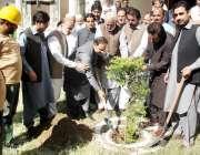 سوات: چیئرمین ڈیڈک فضل حکیم ڈبلیو ایس ایس سی کے دفتر سید شریف میں پودا ..