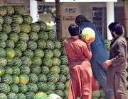راولپنڈی: دکاندار فروخت کے لیے تربوز ترتیب سے رکھ رہا ہے۔