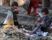 لاہور: سبزی منڈ ی میں خانہ بدوش بچیاں گلے سرے پھل اکٹھے کر رہی ہیں۔