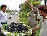 لاہور: شہری پھل فروش سے جامن خرید رہا ہے۔