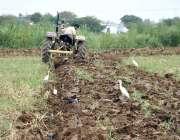 اسلام آباد: وفاقی دارالحکومت میں کستان کھیت کو فصل کے لیے تیار کر رہاہے۔