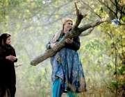 راولپنڈی: خانہ بدوش خاتون بطور ایندھن استعمال کے لیے لکڑی اٹھائے جارہی ..