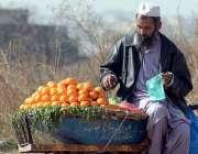 راولپنڈی: محنت کش گاہکوں کو متوجہ کرنے کے لیے کینو سجا رہا ہے۔
