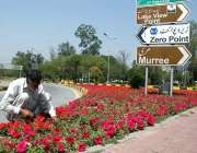 اسلام آباد:سی ڈی کا اہلکار پھولوں کی دیکھ بھال میں مصروف ہے۔