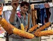 راولپنڈی: محنت کش فروخت کے لیے چھلیاں روسٹ کر رہا ہے۔