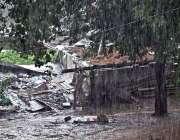 راولپنڈی:جڑواں شہروں میں ہونیوالی موسلا دھار بارش کا منظر۔