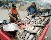 رائیونڈ: مچھلی فروش فروخت کرنے کے لیے مچھلی تیار کرنے میں مصروف ہیں، ..