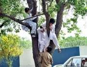 اسلام آباد:مقامی پارک میں بچے کھیل کود میں مصروف ہیں۔