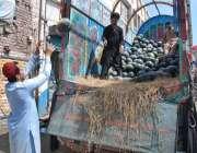 اسلام آباد: مزدور فروخت کے لیے ٹرک سے تربوز اتار رہا ہے۔
