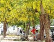 راولپنڈی: شہری دوھوپ کی شدت سے بچنے کے لیے دختوں کے سائے تلے بیٹھے ہیں۔