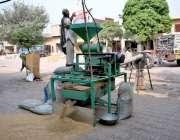 سیالکوٹ: مزدور گندم کی صفائی کر رہا ہے۔