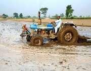 چنیوٹ: کسان کھیت کو چاول کے فصل کے لیے تیار کر رہاہے۔
