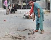 لاہور: ایک سپیرا سانپوں کا تماشا دکھا رہاہے۔