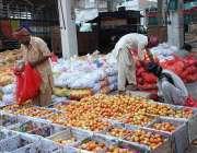 ملتان: مزدو ٹماٹر لکڑی کی پیٹیوں میں پیک کررہے ہیں۔
