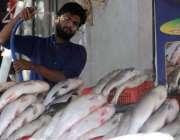 اسلام آباد: دکاندار مچھلی کو پانی لگا رہا ہے۔