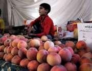 راولپنڈی: کمسن بچے نے سستا بازار کمیٹی چوک میں سٹال پر پھل فروخت کے ..