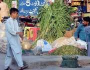 اسلام آباد: ایک شخص روڈ کنارے قربانی کے جانوروں کے لیے چارہ فروخت کر ..