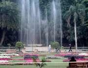 لاہور: باغ جناح میں لگے پھول خوبصورت منظر پیش کر رہے ہیں۔
