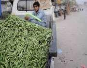 اسلام آباد: کمسن لڑکا گاڑی پر مٹر فروخت کرنے کے لیے بیٹھا ہے۔