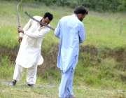 اسلام آباد: سی ڈی کے اہلکار گھاس کاٹنے میں مصروف ہیں۔