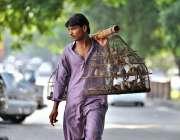 اسلام آباد: محنت کش پھیری لگا کر پرندے فروخت کر رہا ہے۔