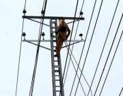 فیصل آباد: فیسکواہلکار بجلی کی تاریں مرمت کرنے میں مصروف ہے۔