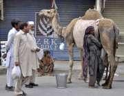 راولپنڈی: خانہ بدوش خاتون اونٹنی کا دودھ فروخت کر رہی ہے۔