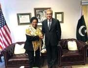 واشنگٹن: وزیر خارجہ مخدوم شاہ محمود قریشی ، امریکی نمائندہ شیلہ جیکسن ..