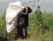 راولپنڈی: خانہ بدوش شخص کچرے کے ڈھیر سے کار آمداشیاء اٹھائے لیجارہا ..