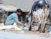 لاہور: مغلپورہ روڈ پر ایک خانہ بدوش کوڑے کے ڈھیر سے سبزیا اکٹھی کر رہا ..
