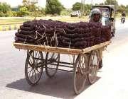 حیدر آباد: ایک ریڑھی بان چوڑیاں مارکیٹ میں سپلائی کے لیے لیجا رہا ہے۔