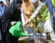 راولپنڈی: پاکستان تحریک انصاف کی ایم پی اے مسز فرح آغا صاف ، سر سبز پنجاب ..