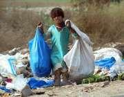 ملتان: خانہ بدوش بچی کچرے کے ڈھیر سے کارآمد اشیاء تلاش کر رہی ہے۔