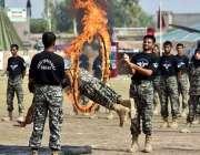پشاور: یوم شہداء کے سلسلہ میں پاک آرمی کے جوان مظاہرہ کی رہرسل کر رہے ..
