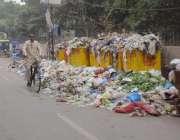 لاہور: باغبانپورہ حق نواز روڈ پر کوڑے کا ڈھیر لگا ہے۔