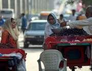 راولپنڈی: خاتون ریڑھی بان سے جامن خرید رہی ہے۔