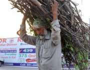 اسلام آباد: ایک معمر شخص گھر کا چولہا جلانے کے لیے خشک لکڑیاں اٹھائے ..