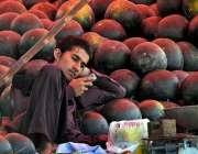 راولپنڈی: دکاندار تربوز سجائے گاہکوں کا منتظر ہے۔