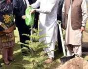 لاہور: وزیر اعظم عمران خان وزیر اعلیٰ ہاؤس میں پودا لگا کر شجر کاری ..