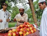 اسلام آباد: نوجوان ریڑھی بان سے آڑو خرید رہے ہیں۔