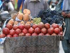 RAWALPINDI: A vendor on his way to sell seasonal fruit for livelihood.