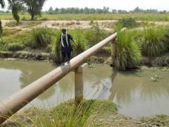 CHINIOT: A man walks on the pipeline to reach the other side due to lack of bridge.