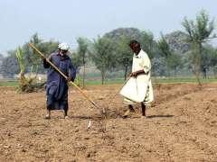 MULTAN: Farmers busy in preparing their farm field for next crop.