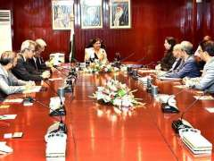 KARACHI: Caretaker Federal Finance Minister Shamshad Akhtar chairing a meeting with the members of Overseas Chamber of Commerce & Industries.