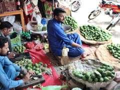 SARGODHA: Vendors busy in cutting mangoes for pickle at Urdu Bazaar.