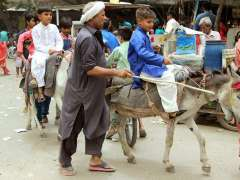 LAHORE: Youngsters ride on donkeys in Provincial Capital.