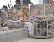 لاہور: پابندی کے باوجود ایک خاتون داتا دربار کے باہر پرندے فروخت کرنے ..
